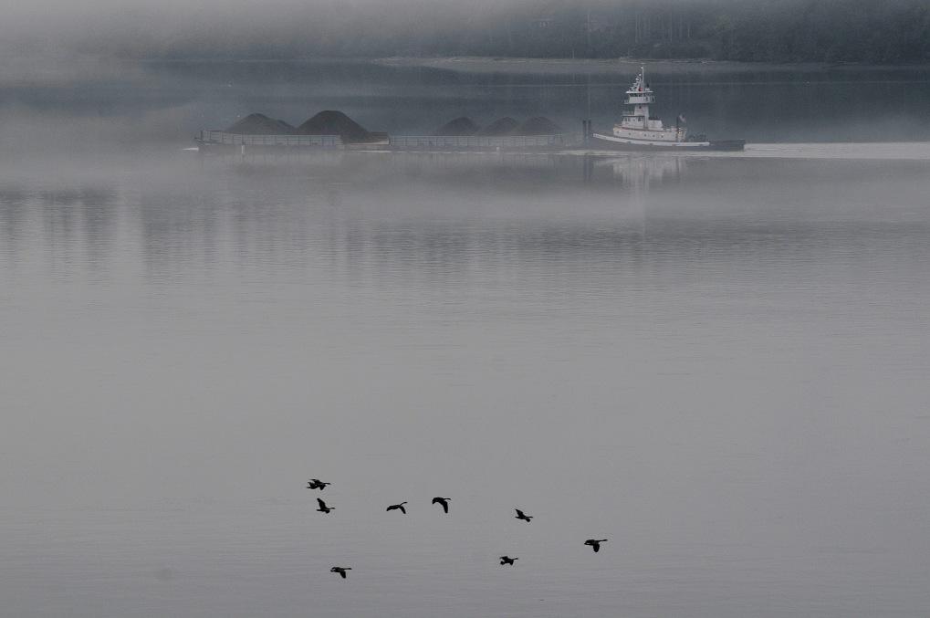 morning fog tug 071612