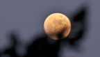 Red skies and full worm moons