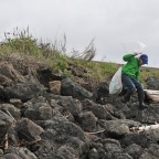 Volunteers help clean up Key Peninsula beach for Parks Appreciation Day