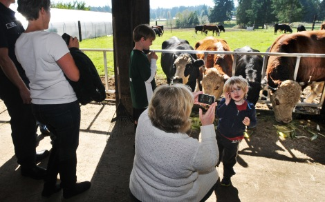 The farm tour is learning about life on the Key Peninsula. A boy gets his picture taken at Creviston Valley Farm last year.