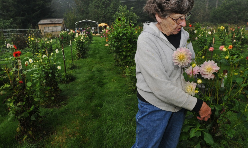 Bea Morrison said being part of the farm tour gives her an opportunity to promote the garden and reconnect with her growing number of neighbors.