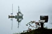 marina fog #2