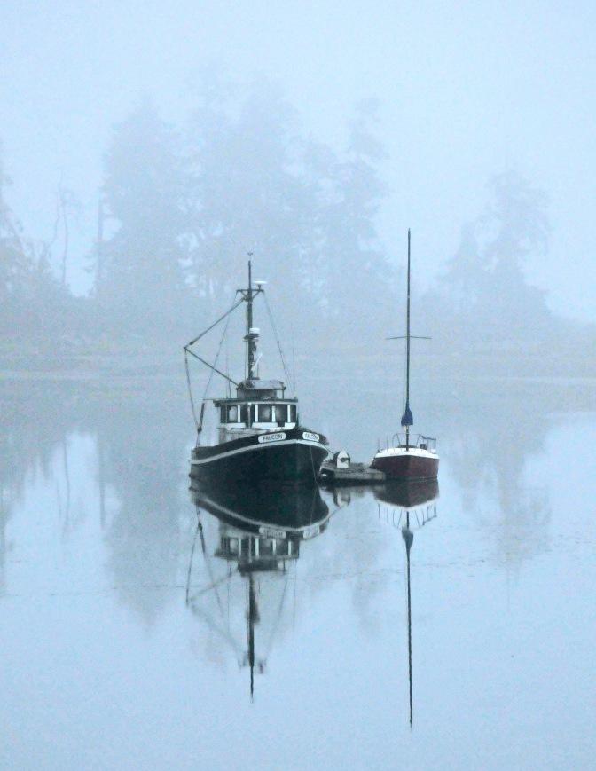 marina fog #3