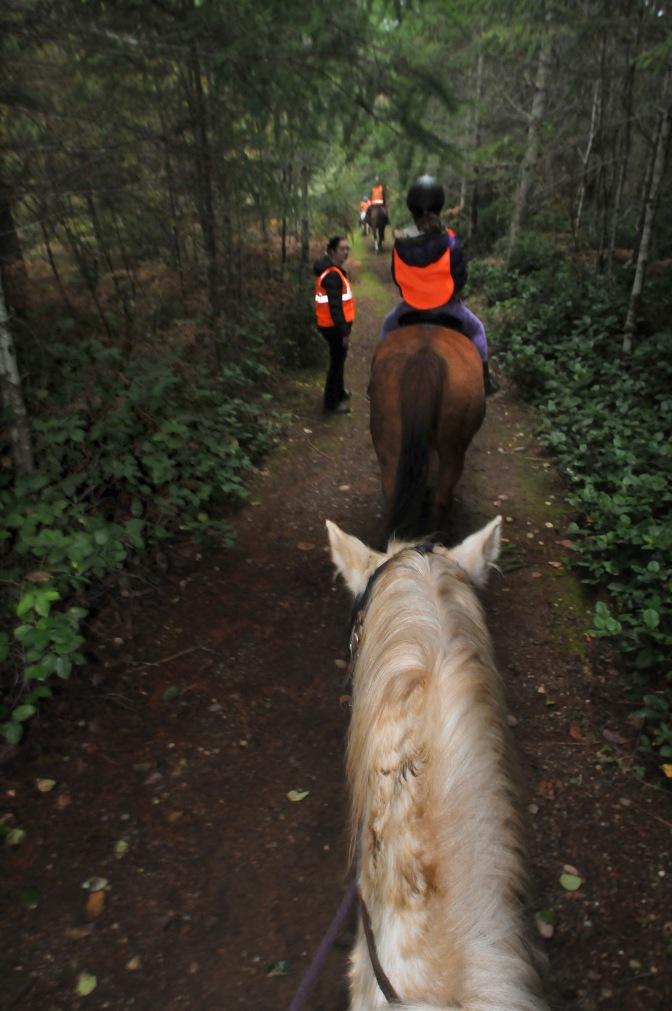trail #6 102013