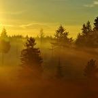 SNAPSHOT: Sunbreak on a cold, winter day