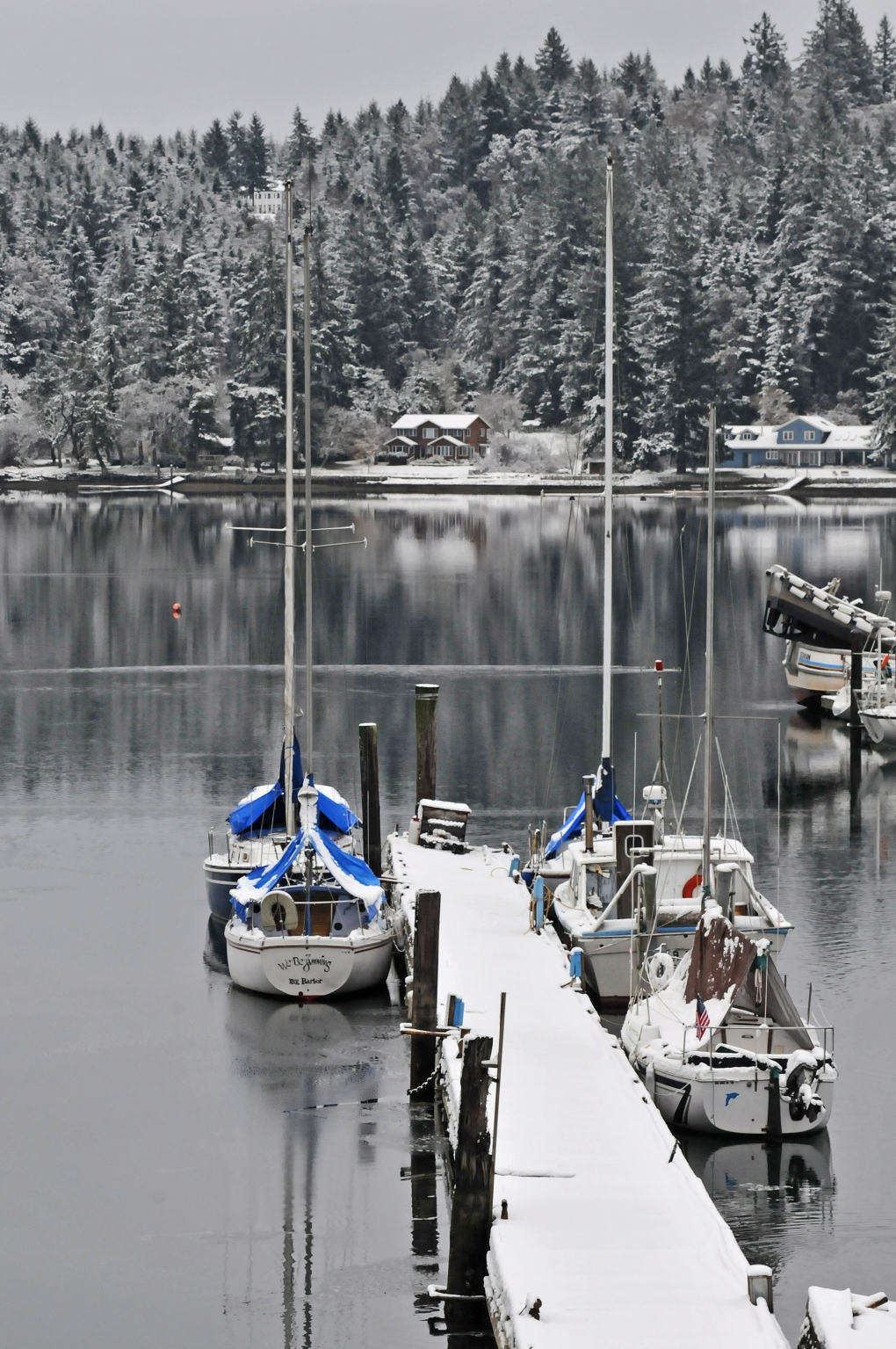 Filucy Bay was a winter wonderland; a postcard-perfect view from the Key Peninsula Highway.