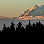 Sunrise Sortie in Longbranch
