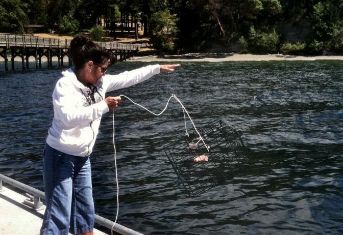 crabbing#1 071914