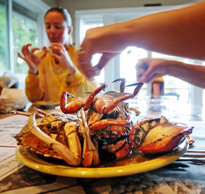 crabbing#3 071914