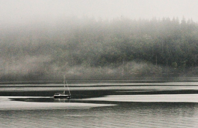 Anderson Island played peek-a-boo all morning as the fog rolled through Drayton's Passage.
