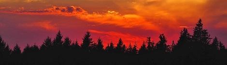 hildahl sunsetcover