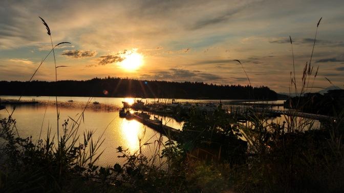 marina sunrise final 080114