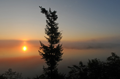 Another gorgeous sunrise on Drayton's Passage as a marine layer floats over Anderson Island.