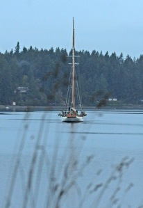 The elegant vessel is in Longbranch on a Sound Explorations sail.