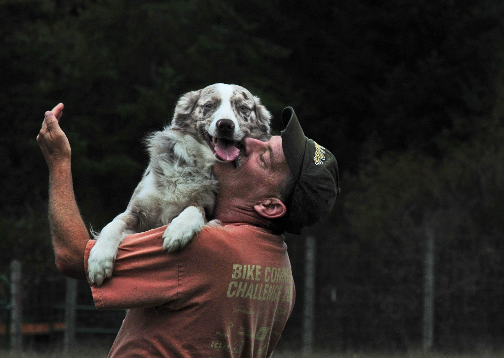 An excited Fred leaps into West's arms after a successful herding exercise.