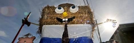 scarecrow cover 100314 #1