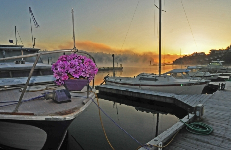 longbranch sunrise#2 111714