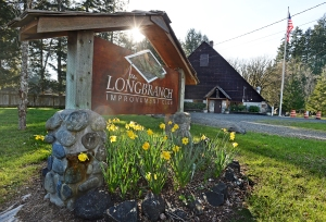 Our mild winter teased the daffodils to bloom early by the Longbranch Improvement Club's house.