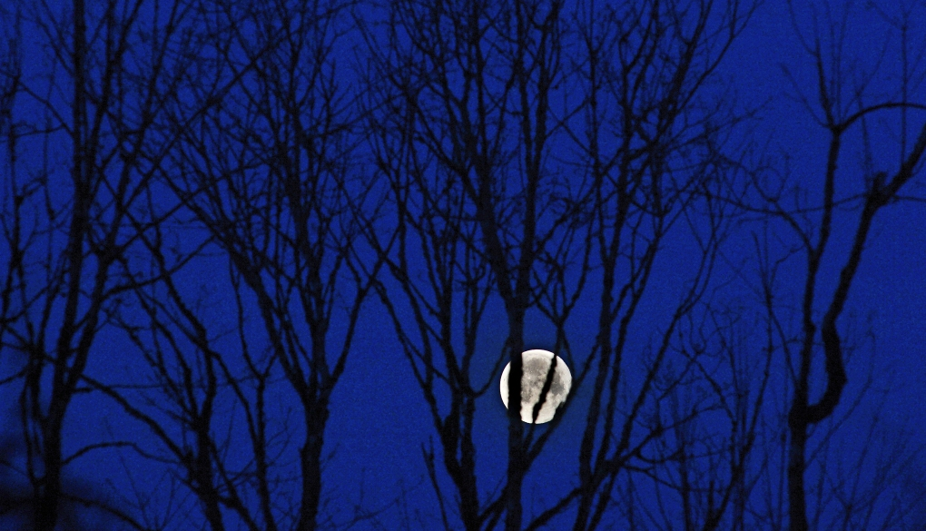A setting moon before the morning fog rolled into Longbranch, Washington, March 7, 2015.
