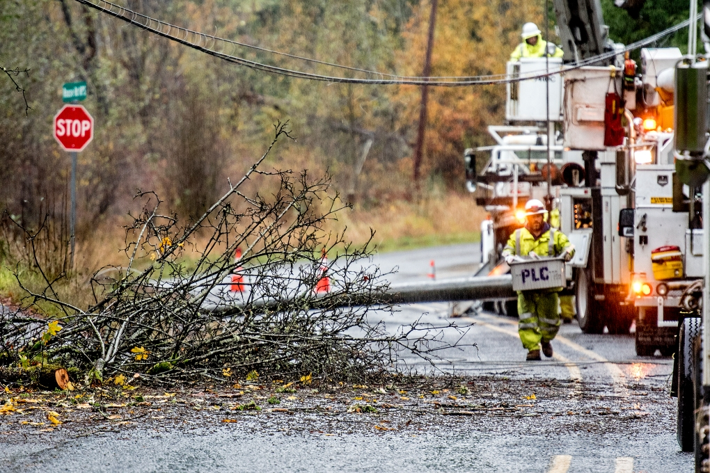 Crews from the Peninsula Light Co. replace a power pole downed by a large branch from a tree on the intersection of Rouse Road and Key Peninsula Highway in Longbranch, Washington, Saturday.