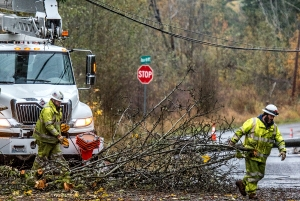 Longbranch was without power for nearly 12 hours as rain continued to fall in the Puget Sound.