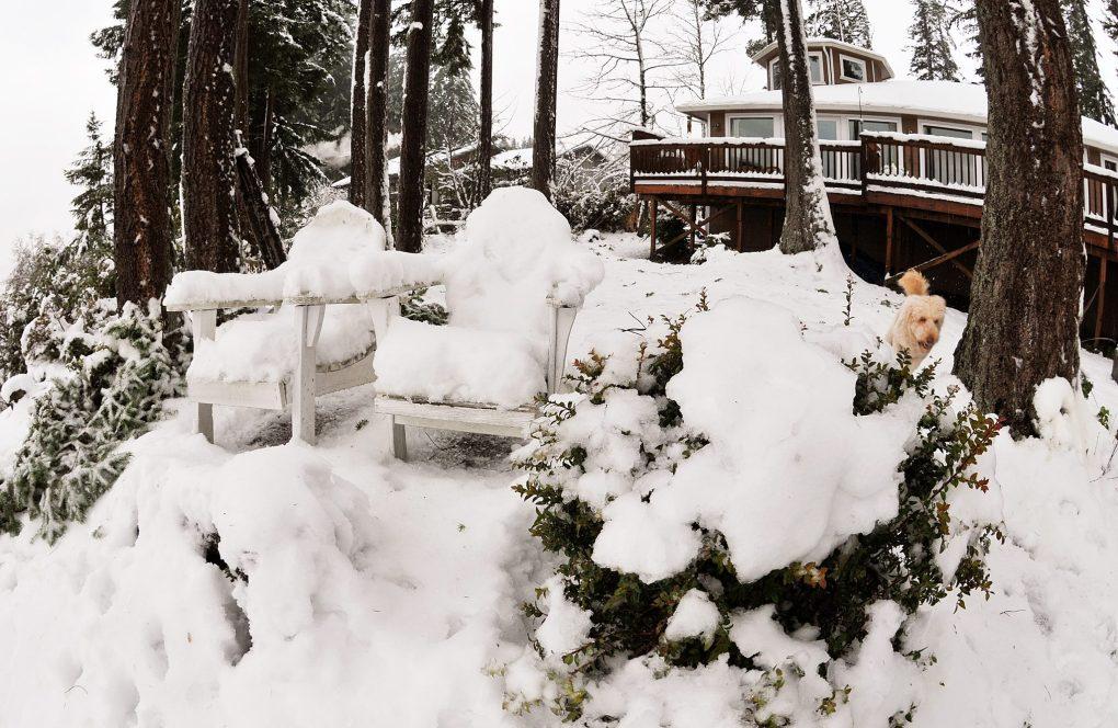 january snow006