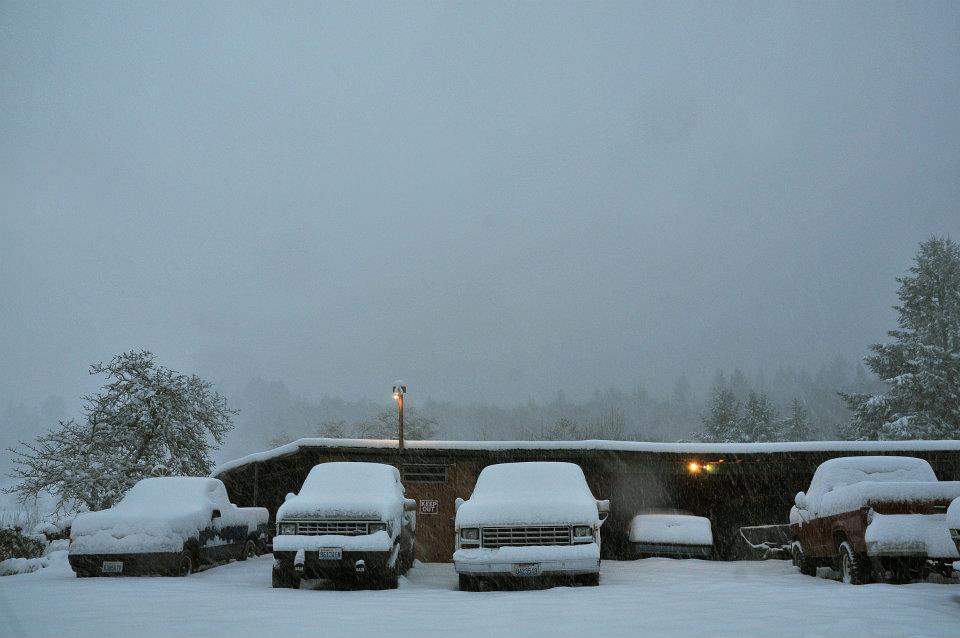 january snow009
